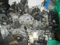 DSCN9144